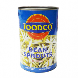 Bean Sprouts 425gr
